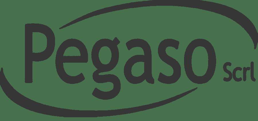 Logistica Pegaso